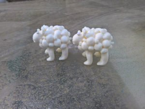 כבשה קטנה בצבע לבן