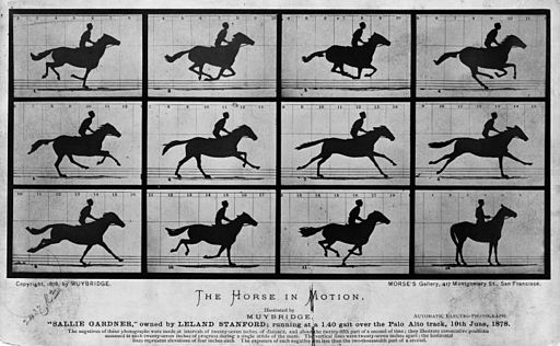 Eadweard Muybridge [Public domain]